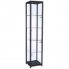 400mm wide Trophy Cabinet in Black - F-400