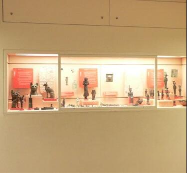 Built in museum showcase 2