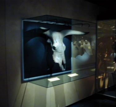Wall mounted museum showcase 3