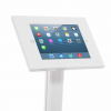Secure iPad Display Stand - closeup