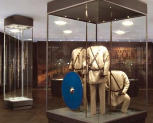 Museum floor showcase 5
