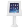iPad Secure Counter Top Display - 5